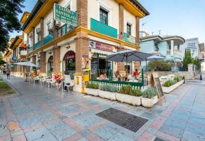 Local comercial en calle Jesus Santos Rein