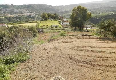 Rural Property in Lugar Cuevas del Guanche