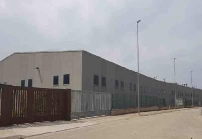 Industrial Warehouse in Carrer del Pla de l'Estany, nº 19-27