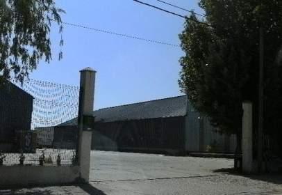 Nave industrial en calle Poligono Industrial los Pinares, nº 34