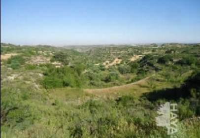 Land in calle Val de La Palomara. Valdealgorfa