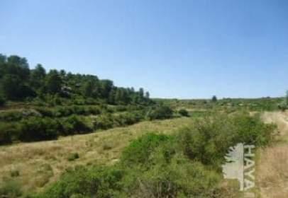 Land in Valdealgorfa