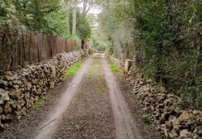 Rural Property in Sencelles
