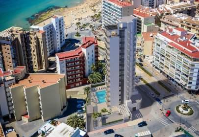 Apartment in Calpe Playa Poniente
