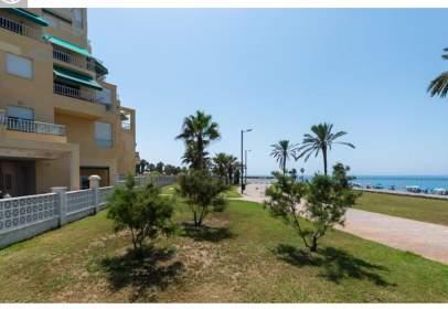 Flat in Playa