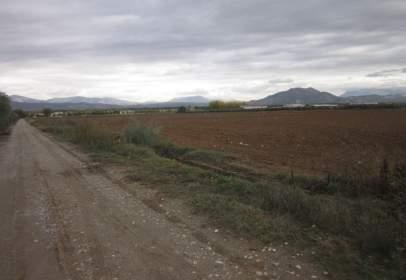 Terreny a calle Galicia