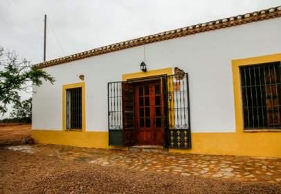 Finca rústica en Torrepacheco