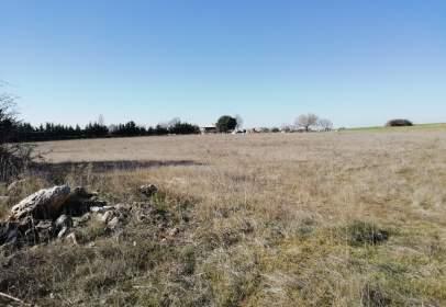 Terreno en Camino Lupiana, Par. 23