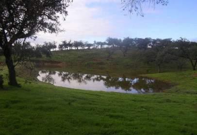 Rural Property in El Patrás