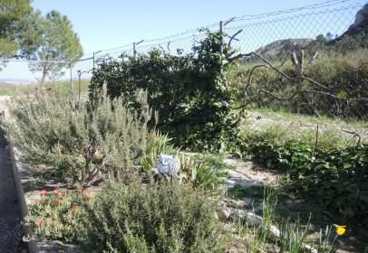 Chalet en Cerca de Jumilla