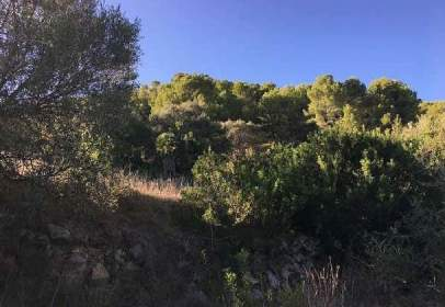 Promoción de tipologias Terreno en venta ANDRATX Illes Balears