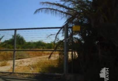 Suelos en Plan Parcial San Benito (Murcia)